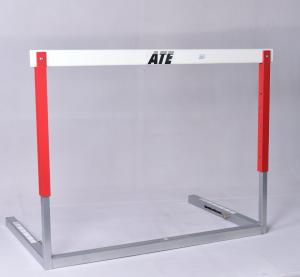 ATE International hurdle
